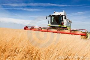 combine-harvester-20639696